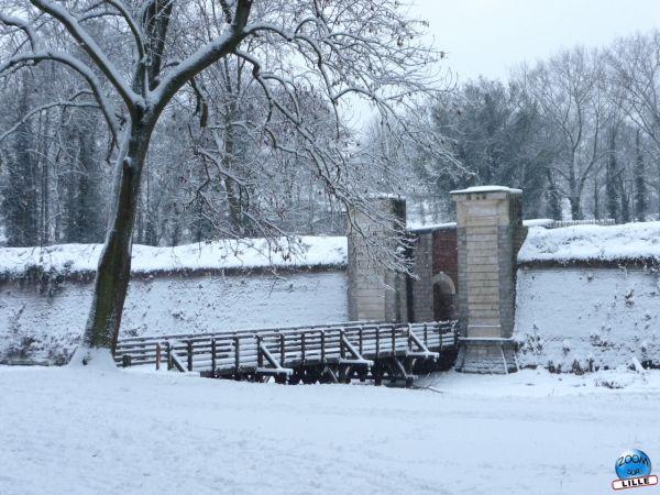 Citadelle sous la neige