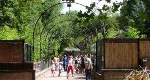 Copyright : Archive Zoom Sur Lille / Parc Zoologique de Lille