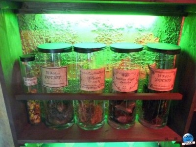 article_harry_potter08