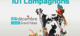 Le salon des animaux de compagnie s'installe à Lille les 6 et 7 décembre 2014