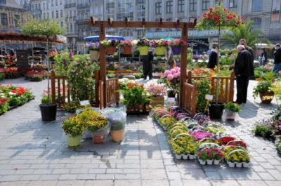 Le marché aux fleurs sur la Grand'Place de Lille du 30 avril au 03 mai 2016