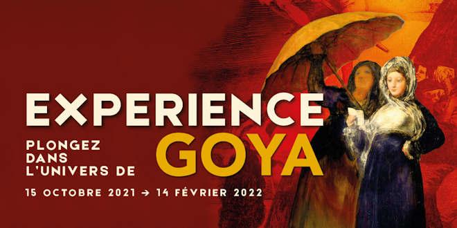 Du 15 octobre 2021 au 14 février 2022, le Palais des Beaux-Arts de Lille propose une exposition sur Goya