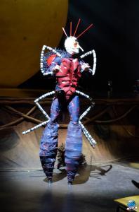 Cirque du Soleil - OVO - 01