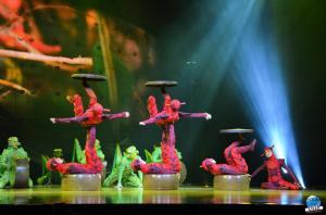Cirque du Soleil - OVO - 08