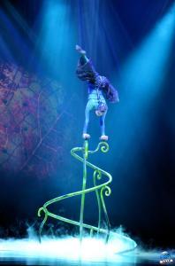 Cirque du Soleil - OVO - 10
