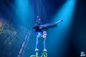 Cirque du Soleil - OVO - 11
