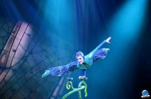 Cirque du Soleil - OVO - 12