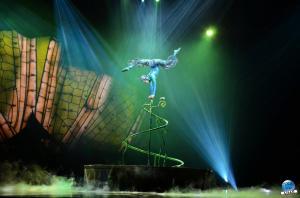 Cirque du Soleil - OVO - 14