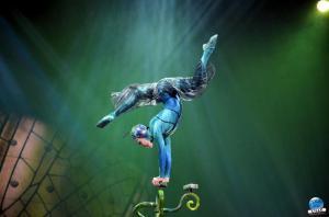 Cirque du Soleil - OVO - 15