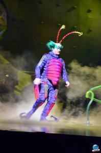 Cirque du Soleil - OVO - 16