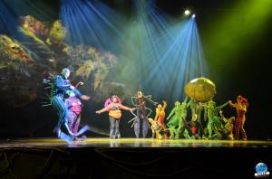 Cirque du Soleil - OVO - 24