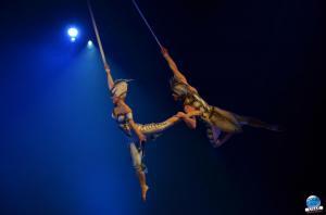 Cirque du Soleil - OVO - 26