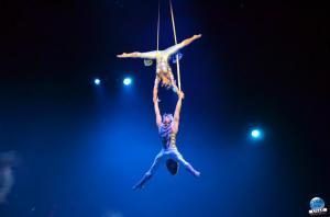 Cirque du Soleil - OVO - 27