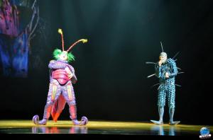 Cirque du Soleil - OVO - 28