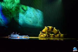 Cirque du Soleil - OVO - 29