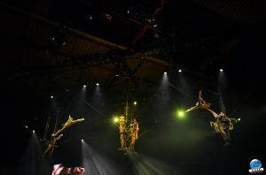 Cirque du Soleil - OVO - 32