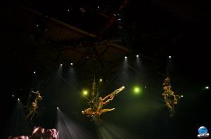Cirque du Soleil - OVO - 33