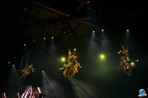 Cirque du Soleil - OVO - 34