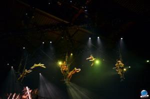 Cirque du Soleil - OVO - 35