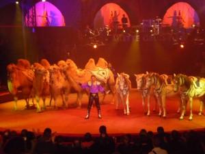 cirque_38_20100313_1999600447