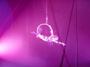 cirque_43_20100313_1236515191