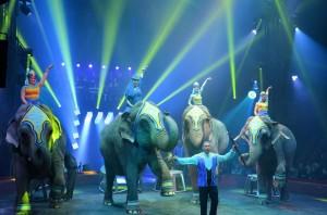 Cirque Arlette Gruss 2015 47