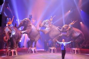 Cirque Arlette Gruss 2015 49