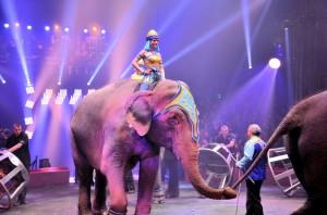 Cirque Arlette Gruss 2015 50