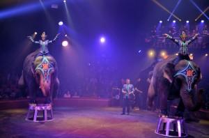 Cirque Arlette Gruss 2016 47