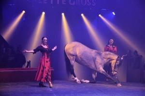 Cirque Arlette Gruss 2017 - 20