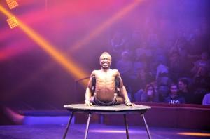 Cirque Arlette Gruss 2017 - 23