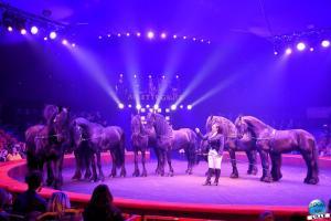 Cirque Arlette Gruss 2020 - 06