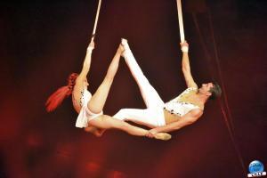 Cirque Arlette Gruss 2020 - 24