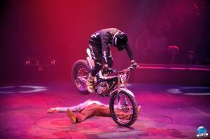 Cirque Arlette Gruss 2018 - 30