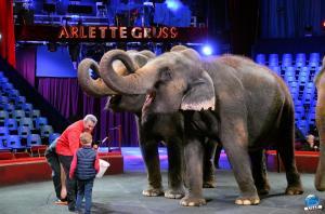 Répétitions Cirque Arlette Gruss 2018 - 20