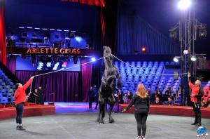 Répétitions Cirque Arlette Gruss 2018 - 29