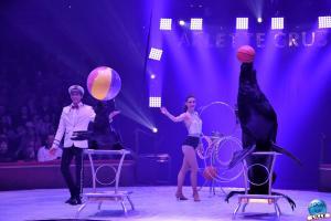 Cirque Arlette Gruss 2019 - 23
