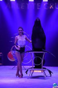 Cirque Arlette Gruss 2019 - 25
