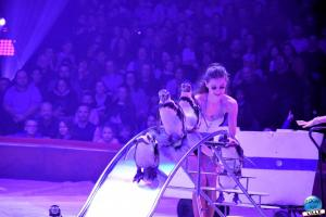 Cirque Arlette Gruss 2019 - 26