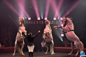 Cirque Arlette Gruss 2019 - 32
