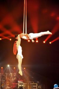 Cirque Arlette Gruss - Novembre 2019 - 45