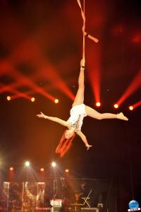 Cirque Arlette Gruss - Novembre 2019 - 48
