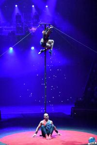 Cirque Arlette Gruss - Novembre 2019 - 52