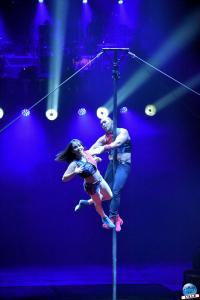 Cirque Arlette Gruss - Novembre 2019 - 53