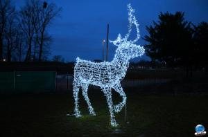 Cita Parc - Noël 2018 - 10