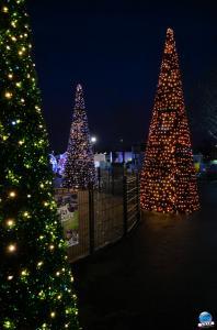Cita Parc - Noël 2018 - 35