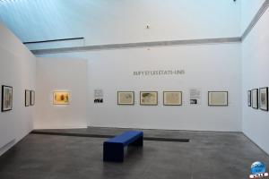 Exposition Raoul Dufy - 13