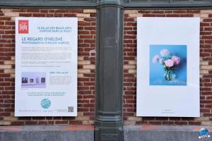 """Exposition """"Le Regard d'Hélène"""" dans la ville - 10"""