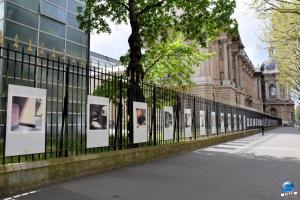 """Exposition """"Le Regard d'Hélène"""" dans la ville - 30"""