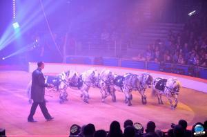 La Grande Fête Lilloise du Cirque 2018 - 35